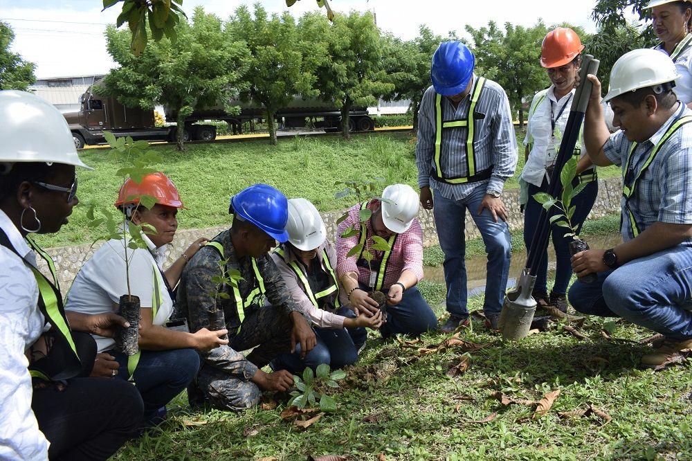 ZOLIC participa en plan de reforestación en Santo Tomás de Castilla
